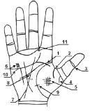 редкие линии и знаки на руке