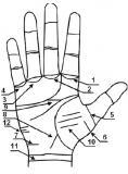 второстепенные линии на руке