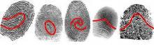 отпечатки пальцев в хиромантии