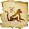 Как встречать 2016 год обезьяны от глоба